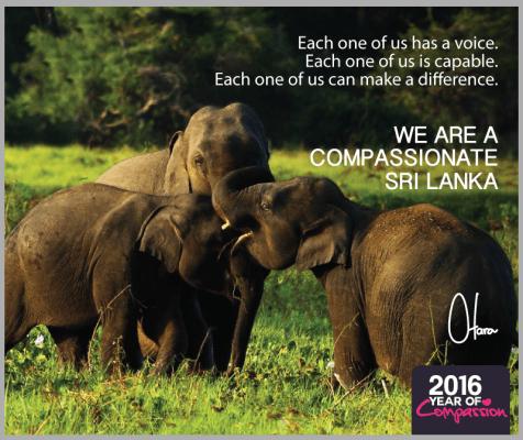 Compassionate_EDM-1